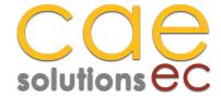 CAE Solutions EC